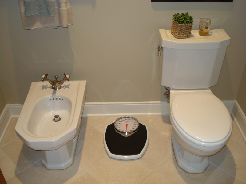 Toilet Bidet Installation Greenville MI