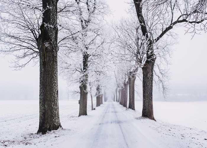 Winter Plumbing Specialists Michigan